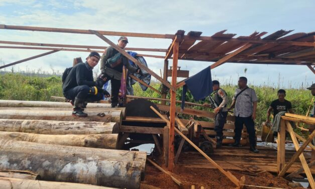 Tim Gabungan Gelar Patroli Bersama Temukan Aktifitas Illegal Logging