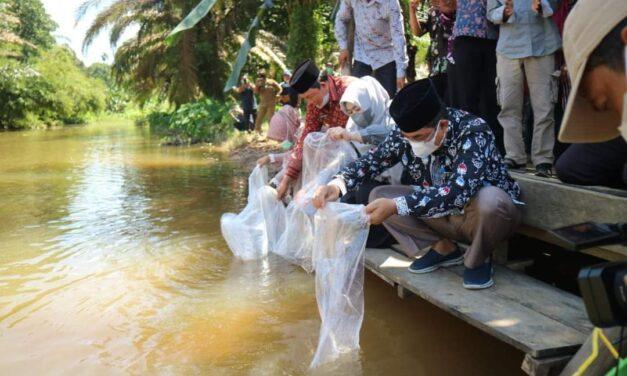 Peringati Hari Lingkungan Hidup, Bupati Tanjab barat Tabur Benih Ikan Lubuk Larangan